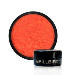 pigment_neon_orange.jpg
