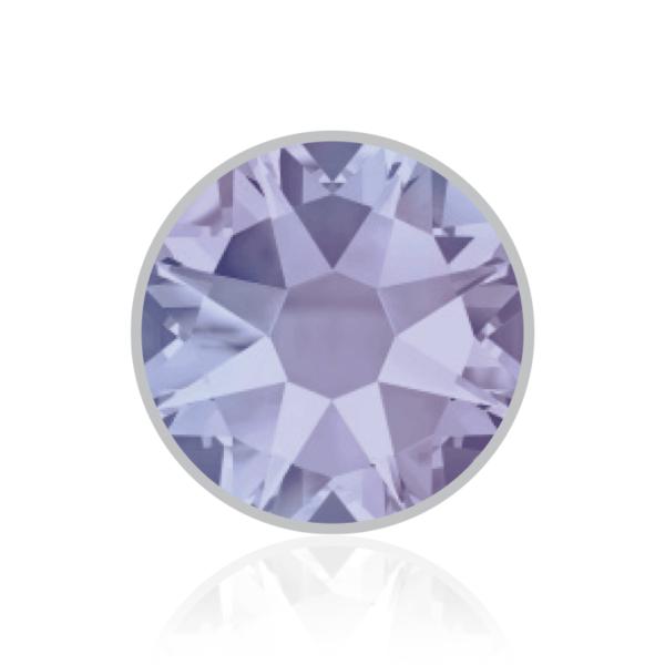 Provence_Lavender_283